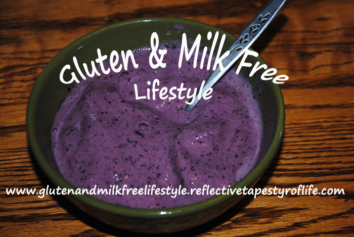 Gluten & Milk Free Banana Blueberry Frozen Dessert By Laura D. Field - Gluten & Milk Free Lifestyle