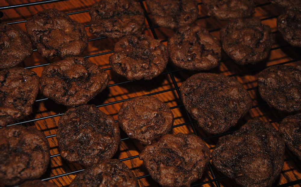Double Choc Chip Cookies - Milk, Gluten and Egg FREE!! And Delicious!!